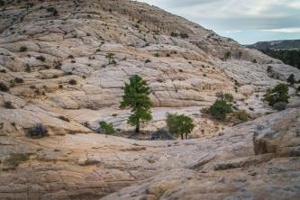 Boulder Utah-2