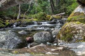 Lena Creek 4